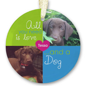 Pet Photo Collage Glass Ornament